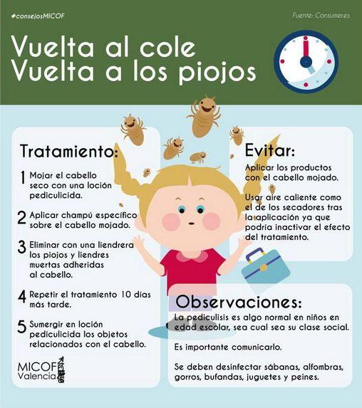 infografia-pediculosis